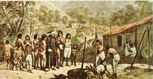 Andrea Roca: Los sertões y el desierto