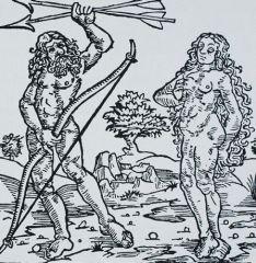 Bruno Nassi, La visión de la mujer en Colón y Vespucci